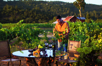 Napa Valley Epicurean Adventure